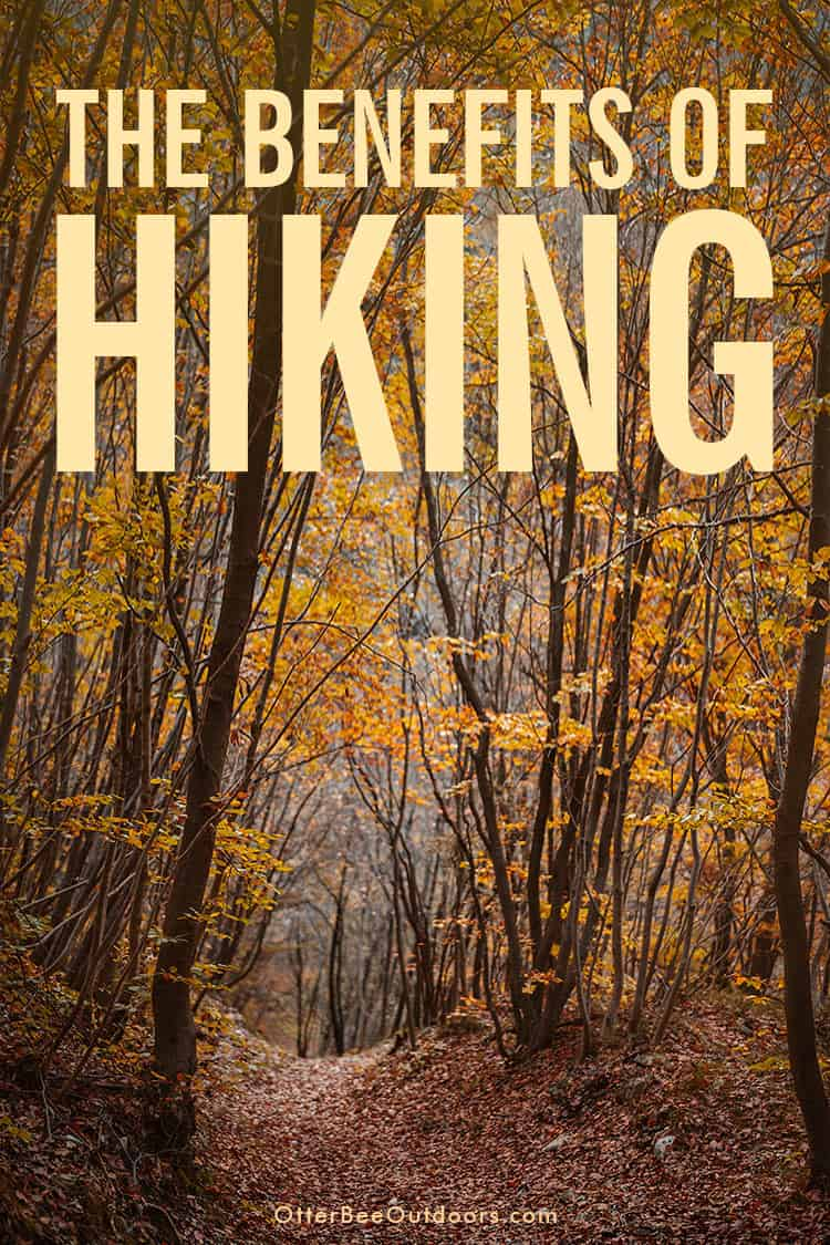 The Purpose Of Hiking? The Benefits: Hiking offers a unique opportunity for exercise, socialization, learning, escape, reflection, expansion of thought, and improved mental well-being. One unparalleled activity with benefits covering the gamut of physical, social, familial, cognitive, mental, spiritual, and financial well-being. The greatest mental benefit of hiking is that it gives us the chance to unplug from technology improving cognitive function and psychological wellbeing.