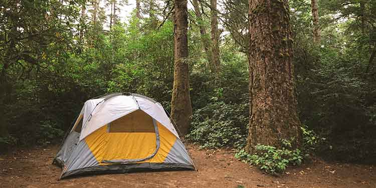 A three-season tent at a camp in the forest.