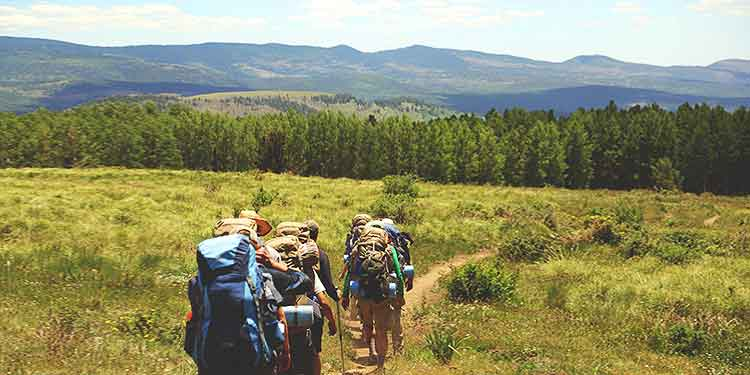 A group of backpackers with heavy packs hiking on a trail through an open field.