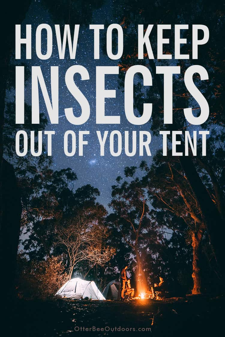 Campsite with tents and campers around a campfire. Image has the caption... How to keep insects out of your tent.