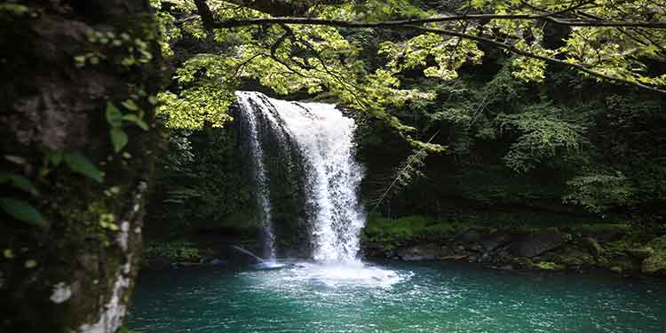A beautiful waterfall with a pool along a hiking trail offers an enticing place for a break, swimming, and picnics.