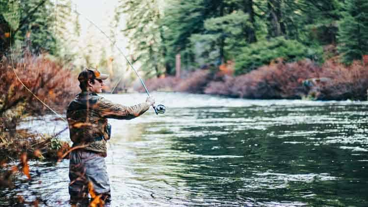 A fisherman in waders fly fishing near the edge of a peaceful river.