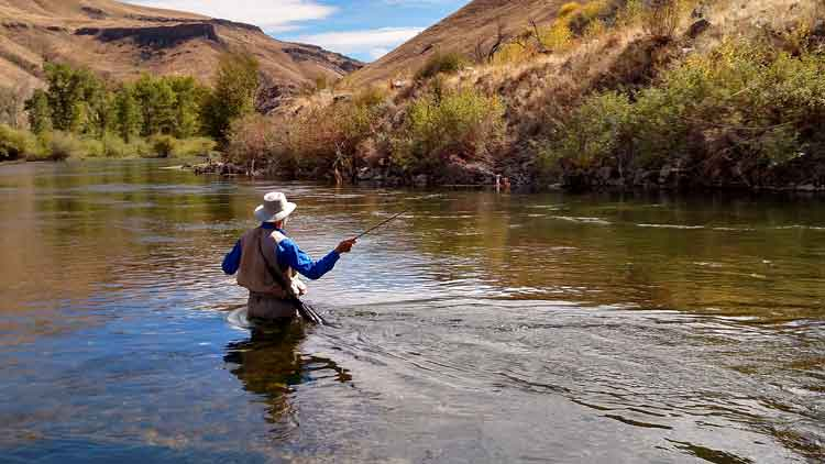 Man fly fishing along a river in a beautiful ravine.