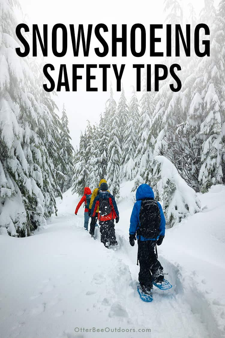 Group of people on a snowshoeing trail. The graphic says... Snowshoeing Safety Tips.