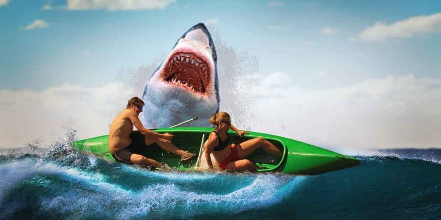 A man and woman in a kayak not obeying basic boating safety capsize in the ocean when attacked by a shark.