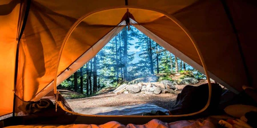 View from inside a tent on a pristine campsite in the woods.