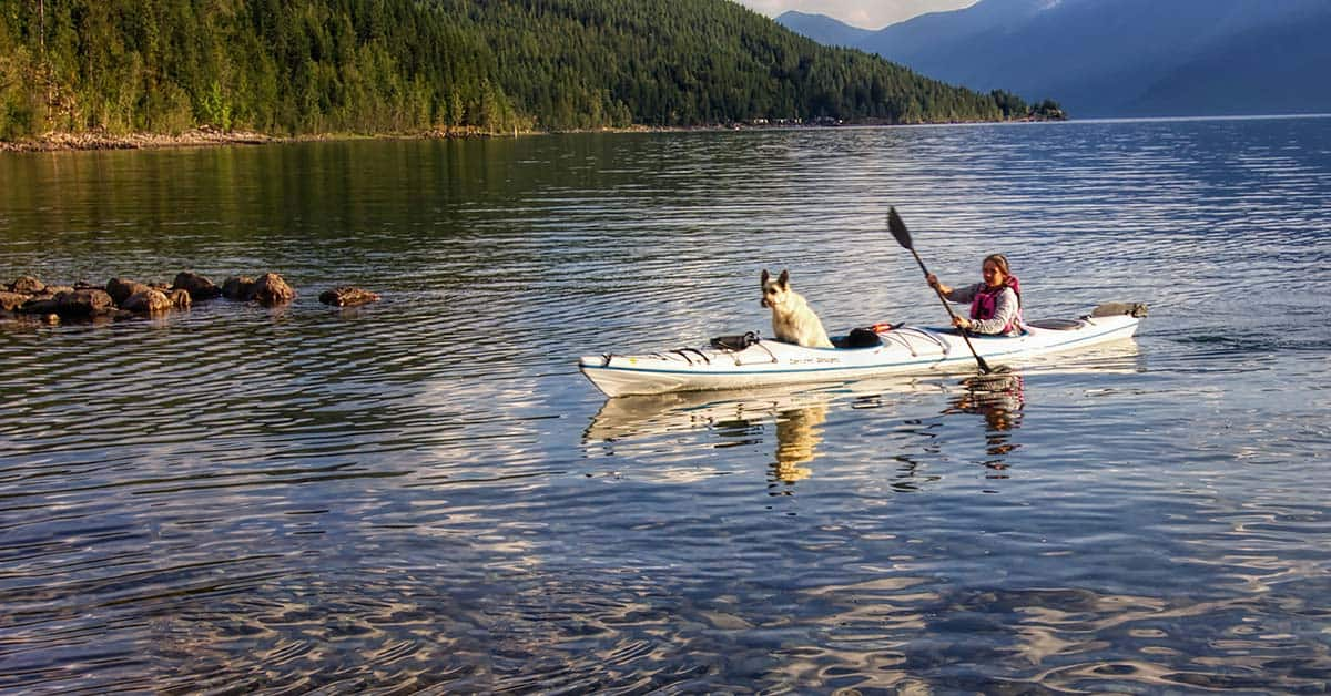 A woman on a lake paddling a 2-person kayak alone with a large dog in the front cockpit to balance the weight in the kayak..